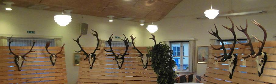 Årets medbragte hjorte. Årets hjort (nr. 4 fra venstre) er nedlagt af John Holm